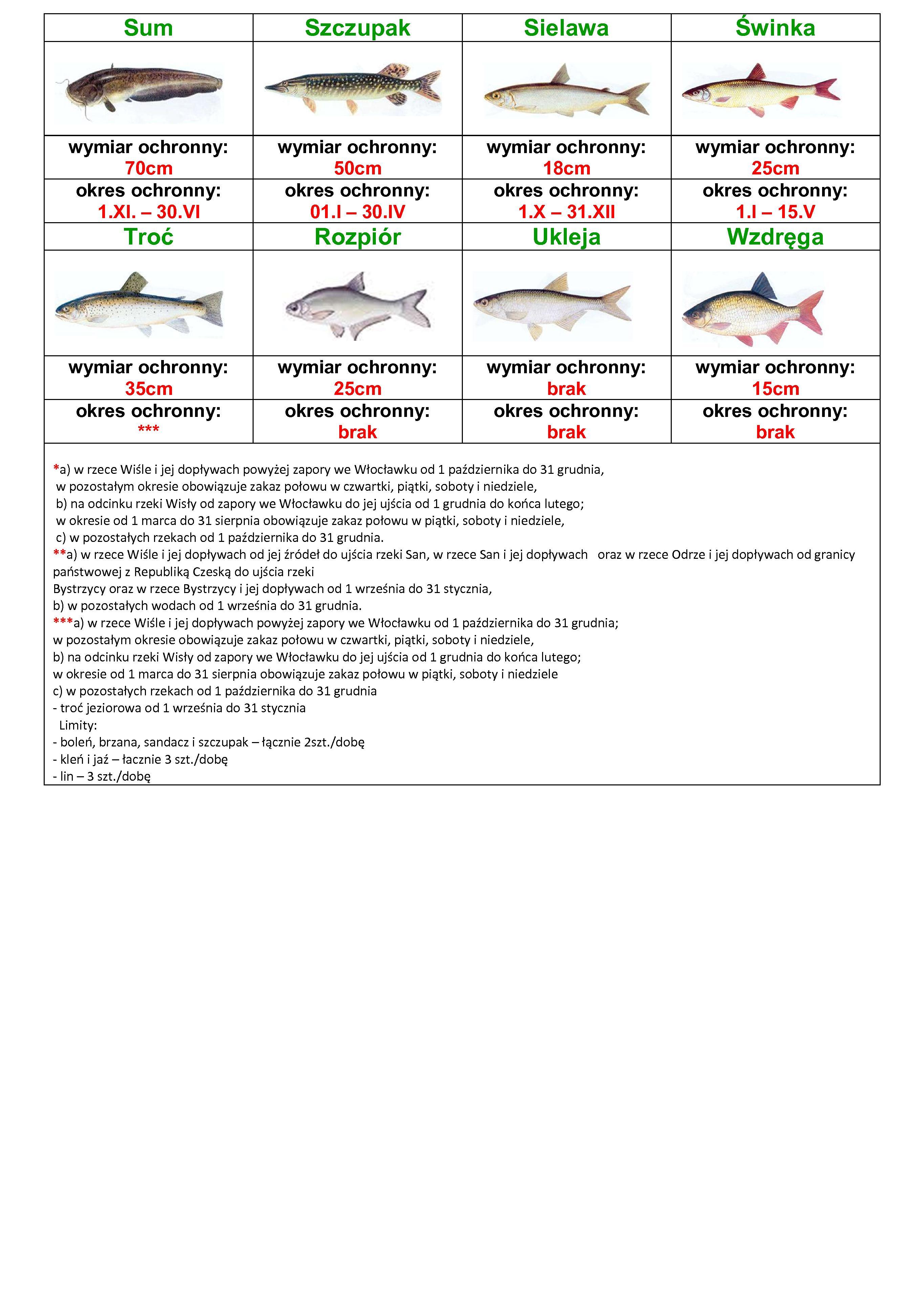 4877_ochrona_1_t5bbskux.pdf.02